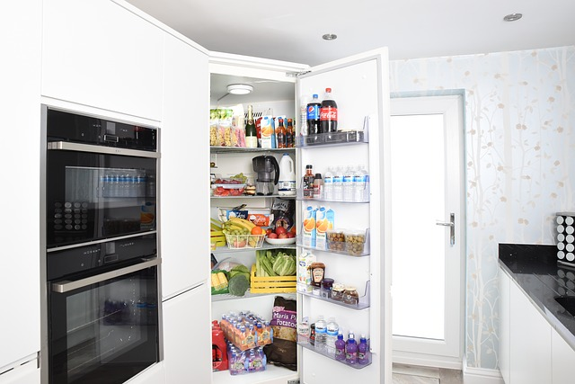 How to Clean Mold From Refrigerator