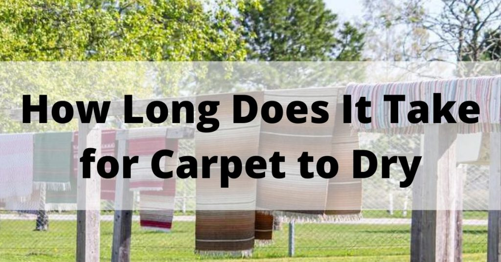 How Long Does It Take for Carpet to Dry