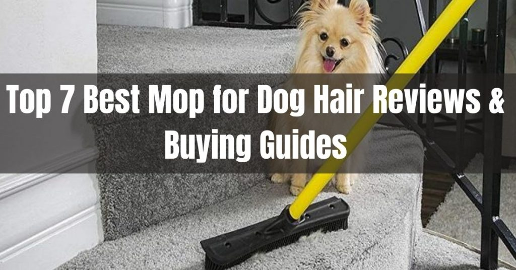 best mop for dog hair